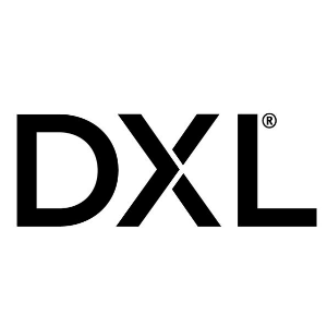 dxl-group logo
