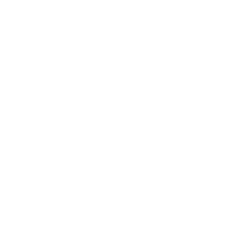 competency framework icon