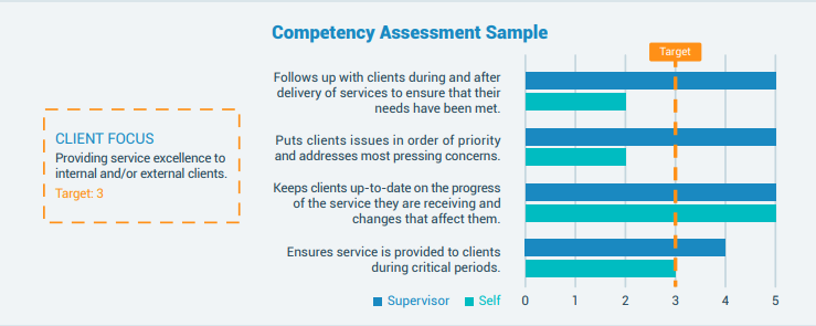 competency based assessment sample