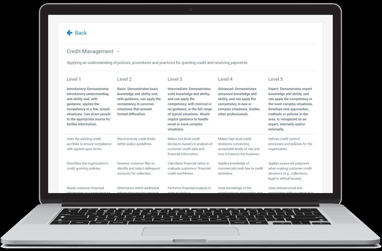 credit-management-laptop